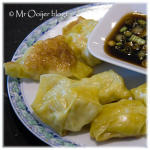 "Wonton ""pot stickers"""